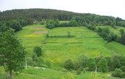 Продам земельный участок в Карпатах (с.Орявчик,  возле базы Тисовец)