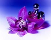 Европейская парфюмерия оптом.Косметика.