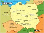 На офіційну роботу в Польщі потрібні спеціалісти та різноробочі.