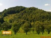 Земерьна ділянка 25 сот в Карпатах с.Ямельниця