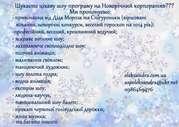 Шоу - програма на Новий рік Львів