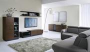 Купить корпусную мебель Bydgoskie Meble в Украине.  Фирма Bydgoskie
