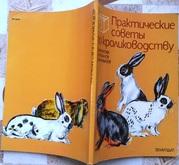 Практические советы по кролиководству.