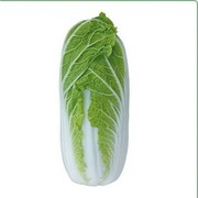 Семена пекинской капусты  KS 374 F1 (Китано)