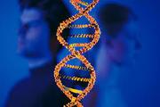 Тест ДНК на отцовство во Львове