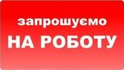 Шукаю професіоналів-будівельників,  Львів.