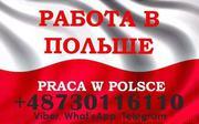 Перевірені вакансії в Польщі,  для чоловіків та жінок.